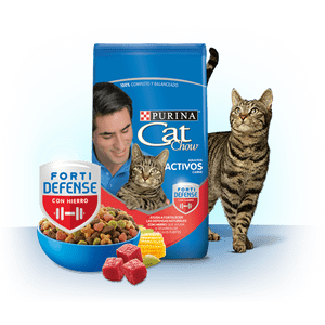 Alimento-Cat-Chow-Adultos-Activos-F-D-X-1.5-Kg-para-gatos