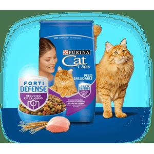 Alimento-Cat-Chow-Peso-Salud-Fortidefense-X-1-Kg-para-gatos