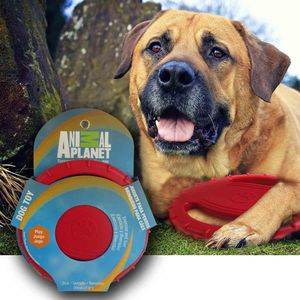Juguete-para-perro-Animal-Planet-Frisbbe-Mordelon