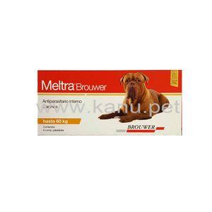 Meltra-Brouwer-x-6-Comp.-para-todos