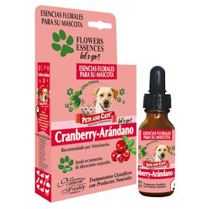 Esencia-Cranberry-Arandano-Letsgo-25Ml-para-todos