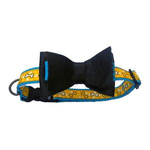 Collar-Turquesa-De-Lujo-Talla-S-Para-Perro