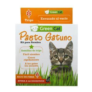 Kit-De-Siembra-Pasto-Gatuno