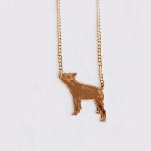 Cadena---Dije-Boston-Terrier