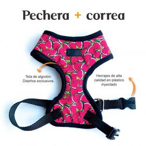 Pechera-y-Correa-Sandia-Fedele-Para-Perro-XS