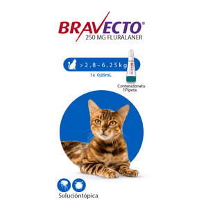 Antipulgas-Bravecto-2.8-a-6.2-KG-Para-Gato